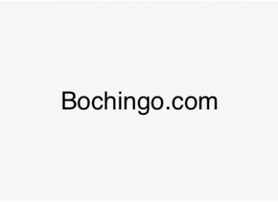bochingo.com1463217991