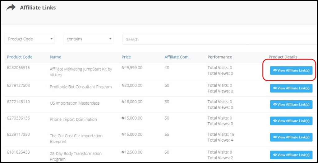 Make Money Online in Nigeria with Affiliate Marketing