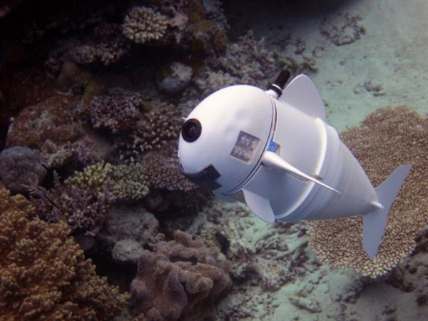 mit-robotic-sofi-fish-3d-printed-parts-future-underwater-observation-1