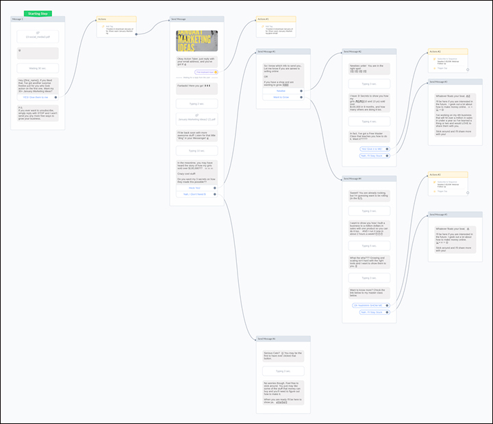 Overview of Alison's ManyChat Webinar ChatBot