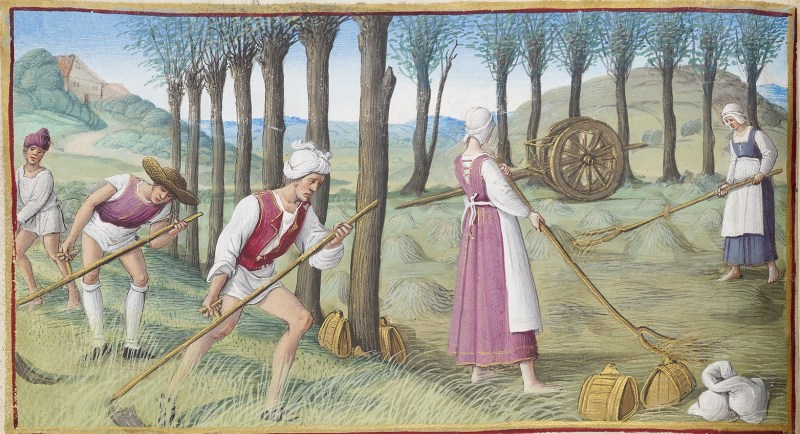 The Morgan Library's Hours of Henry VIII showing three men mowing the hay with scythes and two women raking it into piles