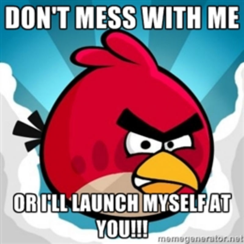 angry birds memes 4 - 5 Angry Birds Memes That Will Make You LOL