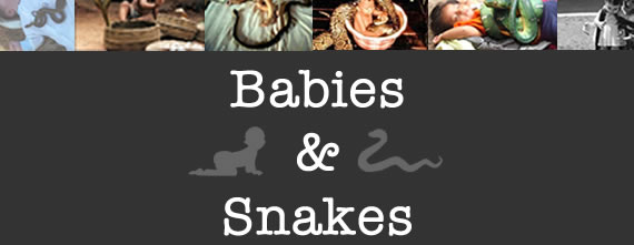 babies and snakes