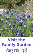 Visit the Family Garden in Austin, TX