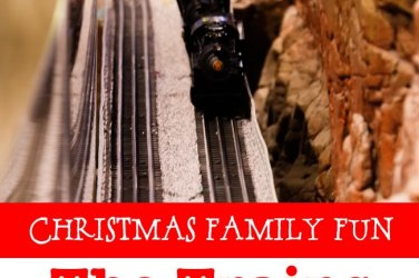 Christmas Family Fun Trains at NorthPark Dallas, TX