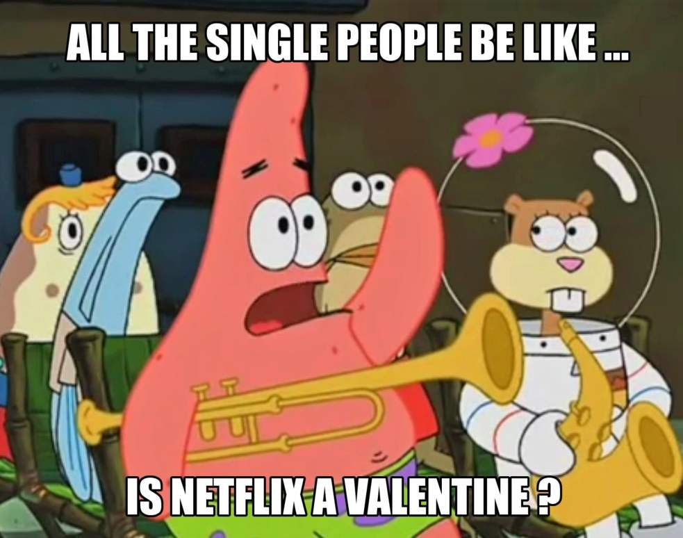 All the single people be like is Netflix a valentine? Funny Valentine Meme for singles