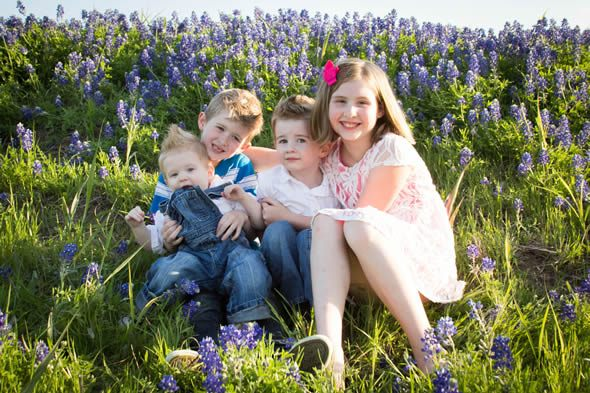 bluebonnet photos in texas