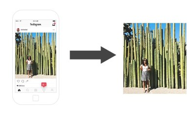 How to Download Instagram Photos and Videos in Under a Minute!