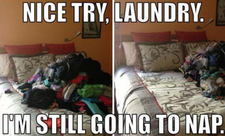 laundry nap meme - nice try, laundry i'm still going to nap