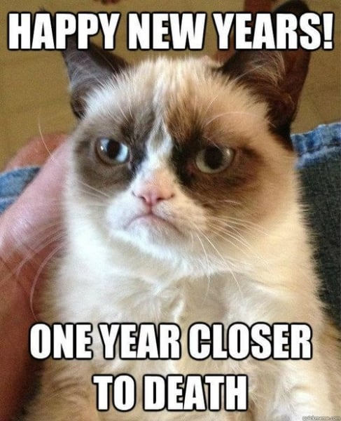 grumpy cat says Happy New Year - One year closer to death.