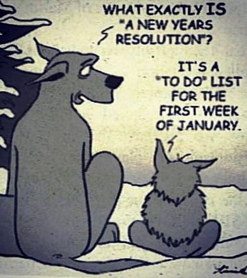 "What exactly is a ""New Year's resolution?"" It's a ""TO-DO"" list ofr the first week of January."