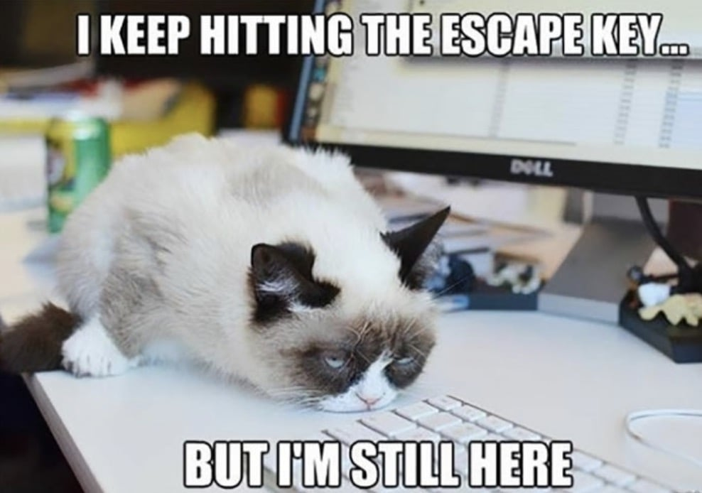 Work Memes - hitting escape key will not make you escape the office