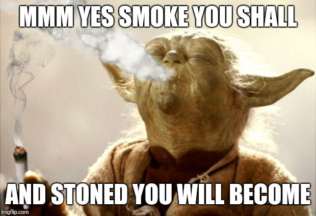 Yes smoke you shall and stoned you will become yoda meme