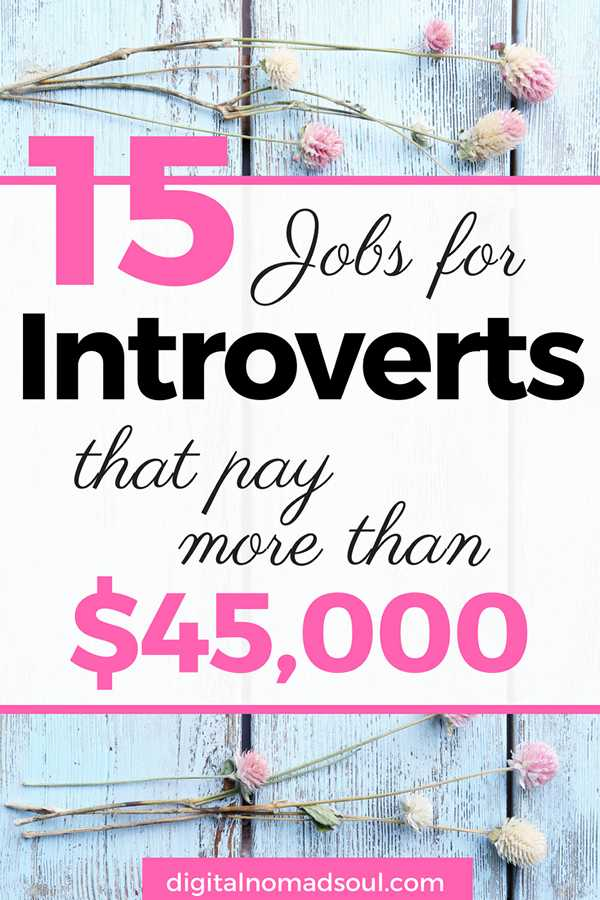 15 High Paying Jobs For Introverts That Are Online Digital Nomad Soul