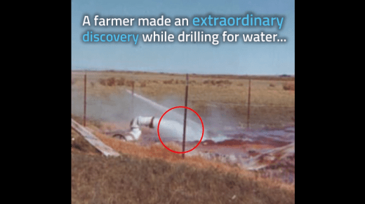 Farmer Was Looking For Water Leak And Found Something Unbelievable