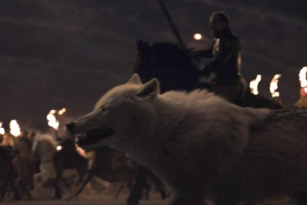 Jon Snows Dire Wolf Ghost Alive or Dead