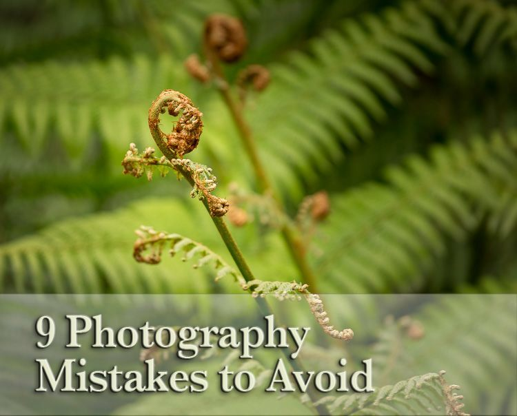 Avoid These 9 Beginner Photography Mistakes That Can Ruin Your Images