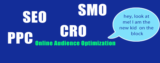 online audience optimization