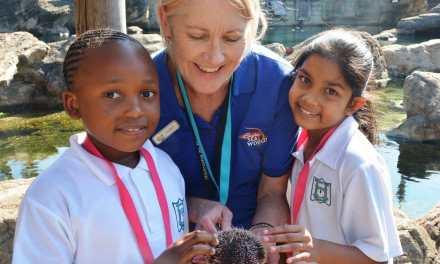 Ushaka Sea World Looking For Education Volunteers