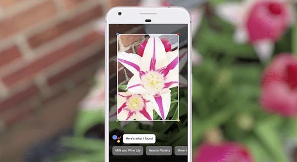 Google Lens arrives for iOS devices via Google Photos