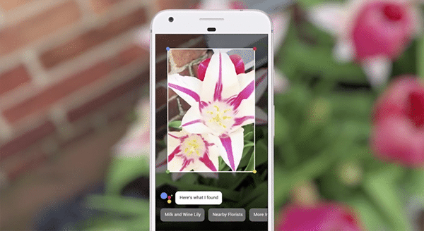 Google Lens arrives for iOS devices via Google Photos