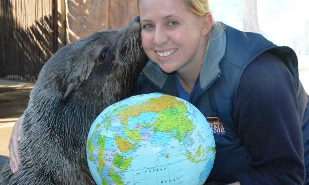 Hobie the Seal with uShaka Sea World Animal Behaviourist Ana Eyre