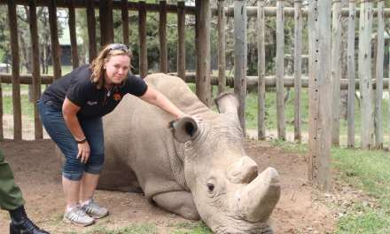 SA conservationist gears up for all-women expedition across southern Africa