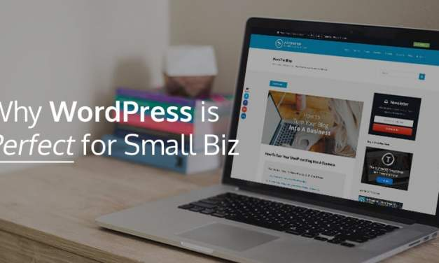Why Does WordPress Win When it Comes to Small Business Websites?