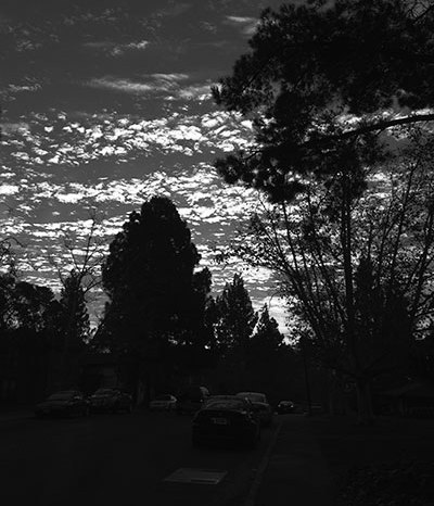 A135A_20140129_photo_black-and-white
