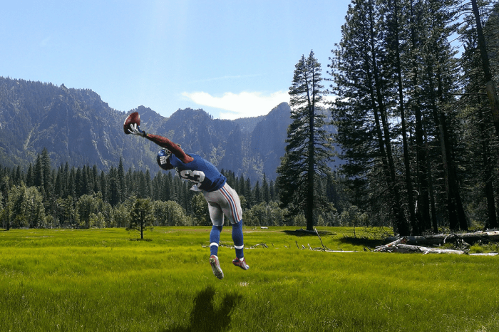 Obj in a field