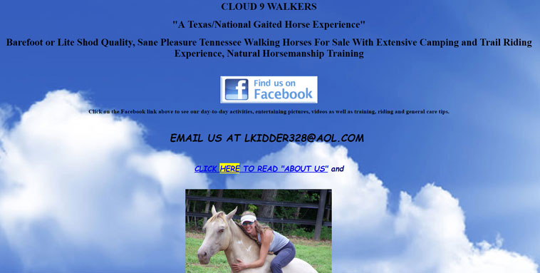 cloud9walkers.com screenshot