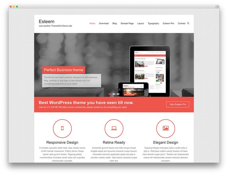 esteem-plantilla-wordpress