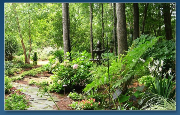 charleston landscape design woodland