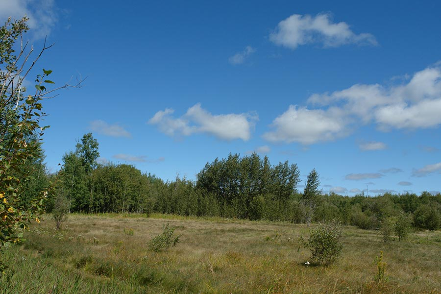 vacant land in ontario