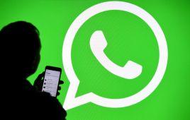 request account info whatsapp