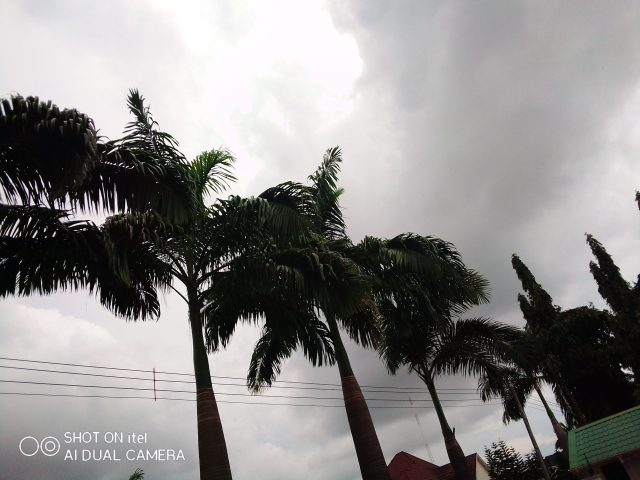 camera review on iTel P36