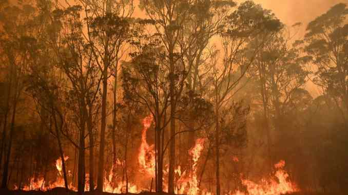 Australian bushfire crisis: PM Scott Morrison calls up 3000 reservists