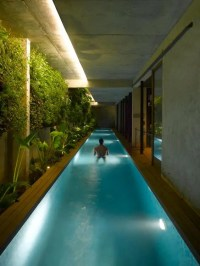 Picture Of long and narrow indoor pool with an indoor garden