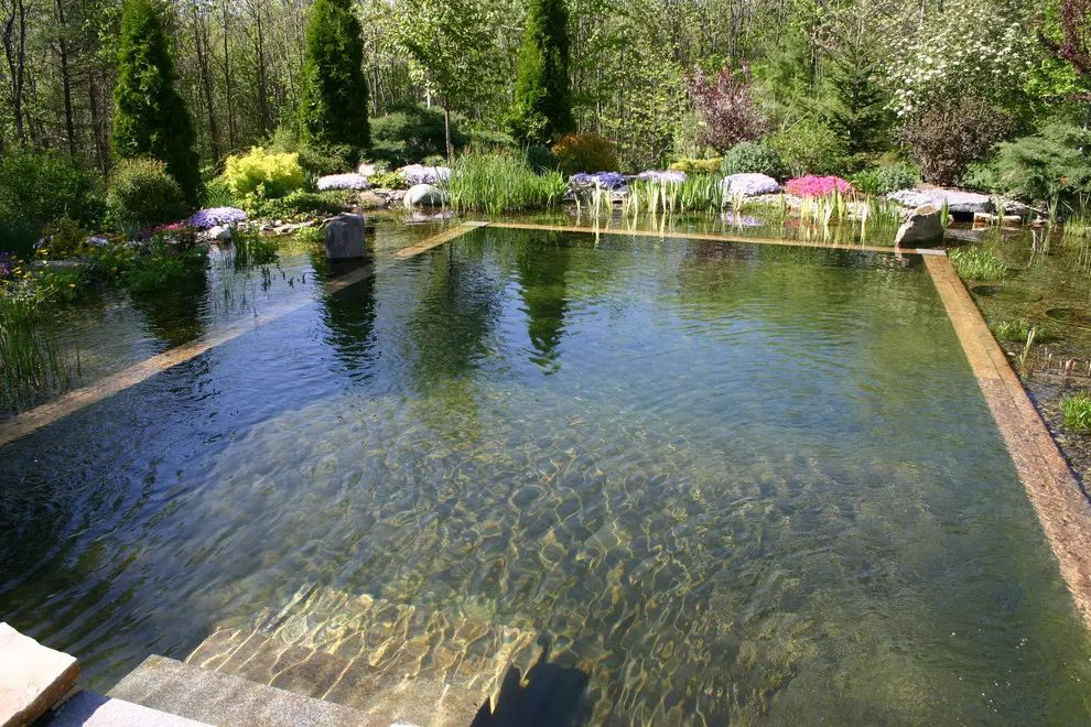 natural pools garden design