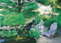 67 Cool Backyard Pond Design Ideas