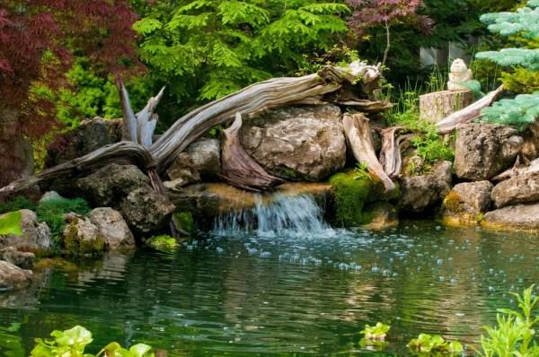 cool backyard pond design ideas