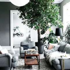Pictures Of Grey Living Rooms Broyhill Room Furniture 30 Green And Decor Ideas Digsdigs Make Accents In Your Dove With Potted Greenery Plants