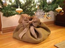 cover the base of your tree with a burlap sack and bows to make it cute and rustic