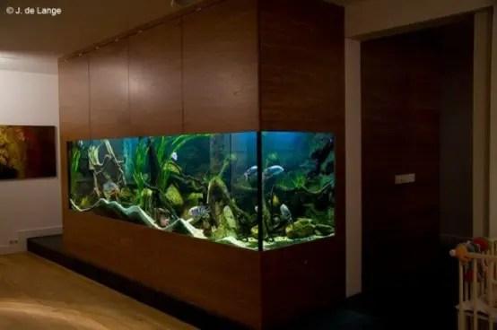 55 Original Aquariums In Home Interiors  DigsDigs