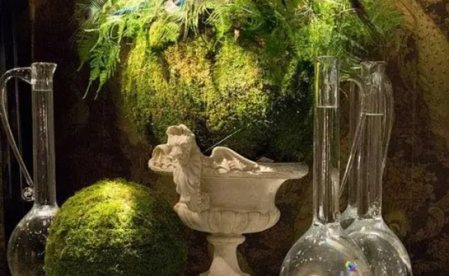 37 Cool Spring Moss Outdoor And Indoor Décor Ideas Digsdigs