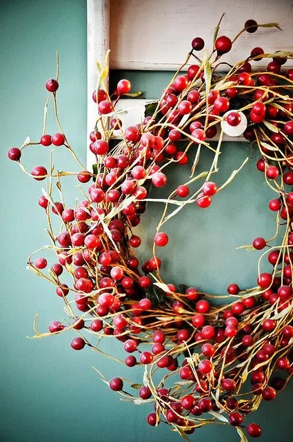 46 Cranberry Christmas Dcor Ideas DigsDigs
