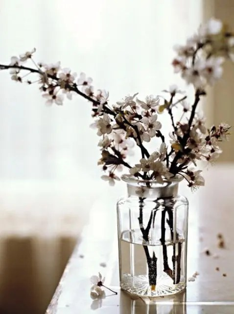 30 Delicate Cherry Blossom Dcor Ideas For Spring DigsDigs
