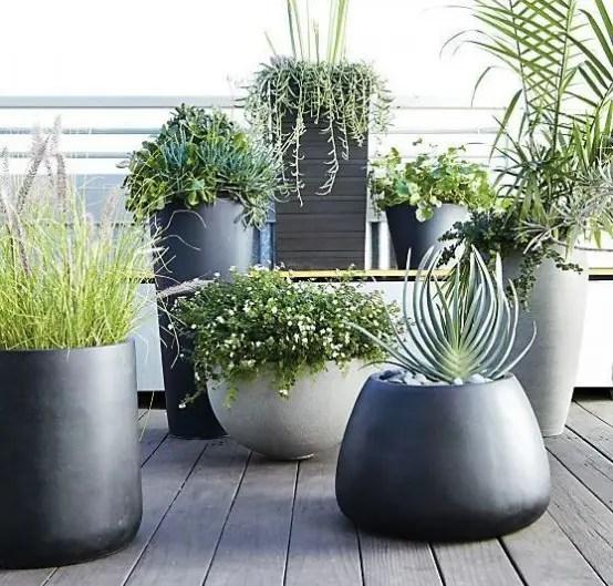 Idees Jardin Vertical