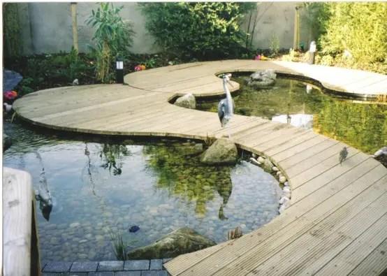 Small Backyard Fish Ponds
