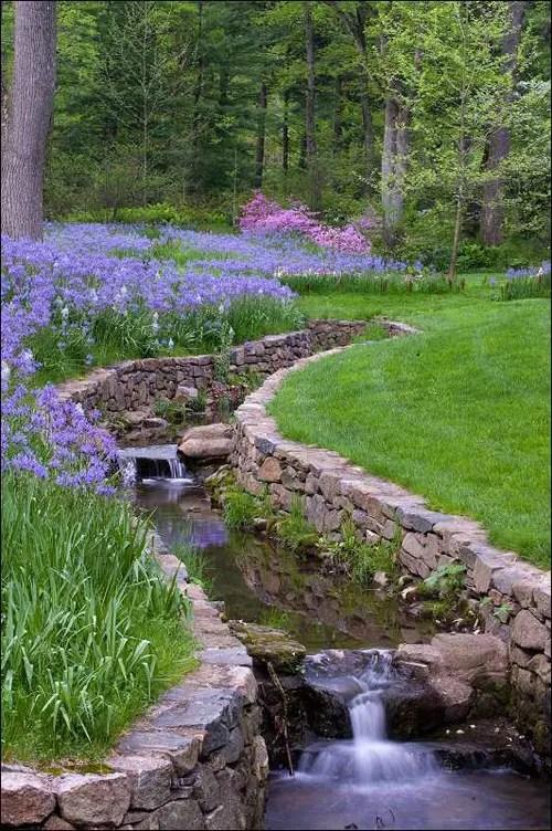 relaxing garden and backyard